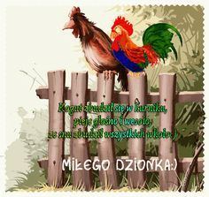 Animals And Pets, Rooster, Gifts, Therapy, Polish, Good Morning, Pictures, Pets, Favors