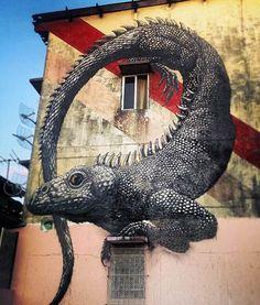 by street artist roa