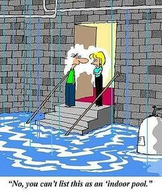 """""""No, you can't count this as an indoor pool."""" Real Estate Comic by TheThorntonGroup, via Flickr #realestate via Monique Broussard Taylor"""