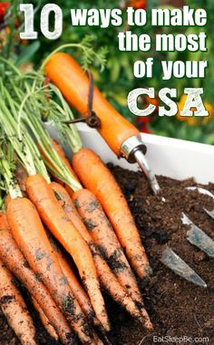 CSA shares are a fantastic way to get organic produce for less. Here are 10 CSA share tips for getting the most out of your fruits and vegetables!