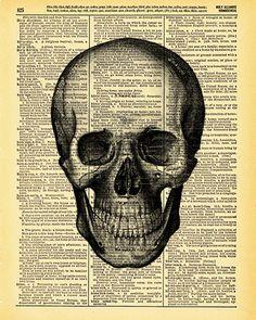 Anatomy Skull on Vintage Dictionary Page
