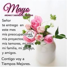 Imágenes con frases y mensajes de bienvenido mayo | Frases Hoy Happy New Year 2019, Good Night Quotes, Months In A Year, Mayo, Happy Day, Best Quotes, San Antonio, Decorations, Holidays