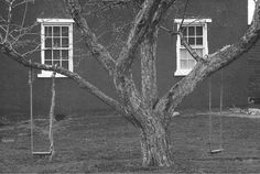 One of my fave photographers-George Tice  Tree, Swings and Windows,Lancaster, Pennsylvania, 1964