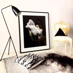 citizen atelier styling christine dovey art zena holloway black rooster Must have that lamp