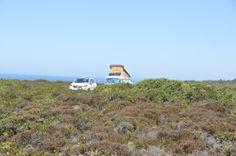 Costa Vicentina, a coast of beaches and cliffs - via ternblog 25.08.2014 | Costa Vicentina has more than 100 kms of beautiful coastal cliffs, from Porto Covo (Alentejo) till Burgau (Algarve) #Alentejo #Portugal Photo: Vale dos Homens