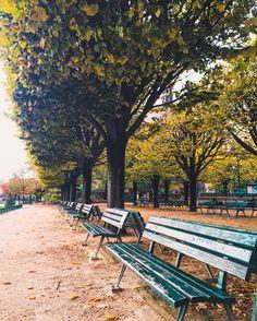 Strolling around Île de la Cité Paris.
