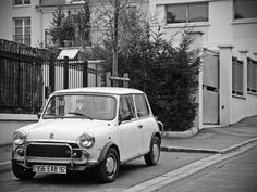 love it !!!    old mini white