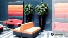 Hoogglans zwarte vaas met daarin kunstbeplanting. Geen onderhoud aan uw planten... een ideale groene oplossing voor in uw kantoorpand!