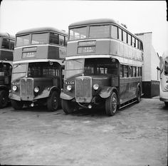 Eastern National AEC Regent TM6308 Southend Essex bus negative