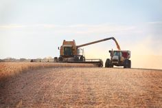 Harvesting Soybeans at Fishback Family Farms in Iowa.  Soy ink is used in over 95 percent of America's daily newspapers that circulate more than fifteen hundred copies per run.