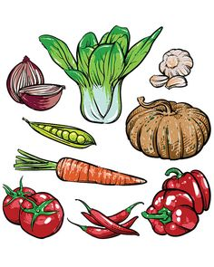 80% Off Sale vector organic vegetables isolated. Hand drawn tomato and garlic…