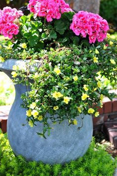 How to Plant Flowers in Pots - Page 3 of 6 - Most Beautiful Gardens
