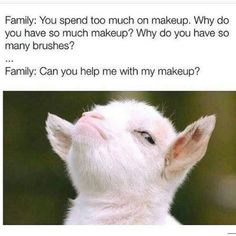 Same goes for their family members. 25 Reasons Why Makeup Artists Are Way Overpaid Makeup Artist Humor, Makeup Humor, Makeup Quotes, Makeup Artists, Funny Facts, Funny Memes, Hilarious, Funny Cartoons, Jokes