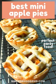 This mini apple pie recipe is literally the BEST! It is so easy and affordable to make at home! Best of all the recipe is repeatable and reliable and works EVERY time! Enjoy this delicious, perfectly portioned treat with your family and friends! Perfect party food! I Mini Apple Pie, Best Desserts, Homemade Pie Recipes #applepie #pie #miniapplepie #apple #easyapplepie #homemadeapplepie #desserts #recipe #easydessertrecipe #muffintinapplepie #fourthofjuly #thanksgiving #partyfoodideas…