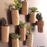 Weekendproject: koelkastmagneten met levende plantjes in kurk maken - hetkanWel.nl