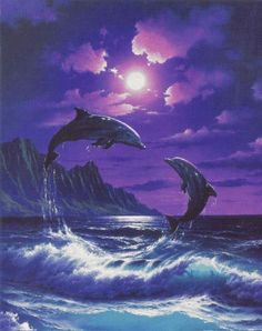 Image Result For Purple Dolphins