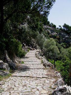 Camí del Puig de María en Pollença