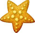 lliella_starfish3.png