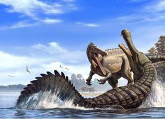 UNA IMAGEN INTERESANTE del Cocodrilo prehistórico Sarcosuchus Imperator Atacando A UNA ESPECIE DE SPINOSAURUS llmado SUCHUMIMUS - Fotolog