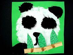 K panda