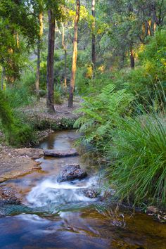 _EBT4742 Ponds, Western Australia, State Parks, Tourism, Waterfall, Surfing, Coast, River, Landscape