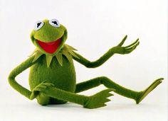 kermit the frog kermit pinterest profilbilder fr sche und spr che. Black Bedroom Furniture Sets. Home Design Ideas