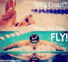 Fly! But I still hate it when people say front crawl...its freestyle!!