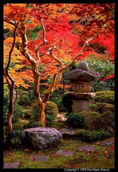 Garden of Enko-ji Temple, Kyoto, Japan by Frantisek Staud