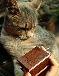Wooden music box  musical box Beethoven Für Elise by Woodissimo, $38.00 #musicbox #wood #woodenbox #woodland #woodwork #cat #catlovers #musicalbox #gift #furelise #beethoven #classicalmusic #music
