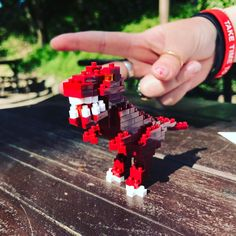 "13 mentions J'aime, 1 commentaires - Damien (@thedadadadada) sur Instagram : ""Meet my new best friend ! #trex #dinosaure #nanoblock #lego"""