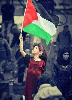 Palestine More