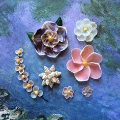 Seashell Flower Sampler Pack by LarkOnTheSand on Etsy