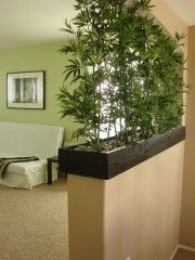 bamboo as a natural screen and room divider - if near a sunny window could just use a rectangle planter on the floor