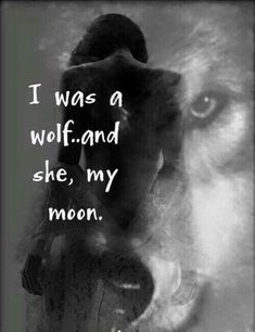 I will always see her as my moon, even though she may never see me as her wolf a. - I will always see her as my moon, even though she may never see me as her wolf again as long as she - Wolf Spirit, My Spirit Animal, Lone Wolf Quotes, Wolf Qoutes, Warrior Quotes, Wolf Love, Big Bad Wolf, Relationship Quotes, Relationships