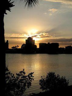 ✯ Between Day And Night - Sarasota, Florida