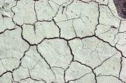 Globaler Landnutzungsbericht empfiehlt gesündere Ernährung und Ausstieg aus Biokraftstoffen. Denn der Internationale Ressourcenrat befürchtet die weltweite Übernutzung natürlicher Flächen und macht Vorschläge für ein nachhaltiges Management. Outdoor Decor, Sustainability, Healthy Food, Nature, Health, Homes