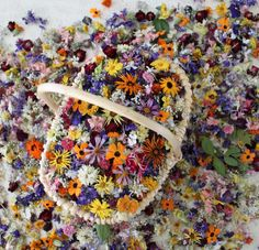dried wild flowers {$30 for 300 flowers}. i know you love these sis, and there are SO many uses - tables, aisle, confetti...