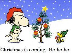 Snoopy and Woodstock Christmas is coming... Ho Ho Ho