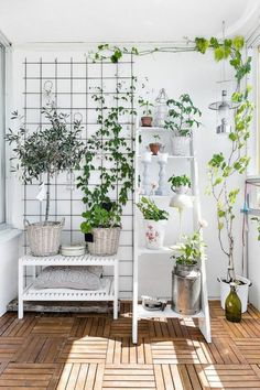 Inspirierende Dekoideen: Kleiner Innen Gartenbereich