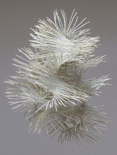 Wild lace, from recycled books by Swiss artist Valérie Buess