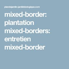 mixed-border: plantation mixed-borders: entretien mixed-border