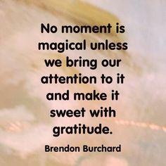 The transformative magic of gratitude