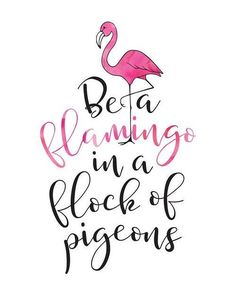 Be a Flamingo in a Flock of Pigeons Printable Quotes, Printable Art, Printables, Flamingo Decor, Pink Flamingos, Calligraphy Quotes, Wall Art Quotes, Quote Wall, Inspirational Wall Art