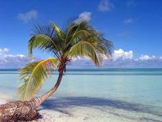 Isla Cayo Coco, Cuba.