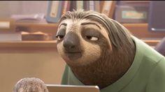 sloth gif zootopia - omg i laughed sooooo hard way too hard
