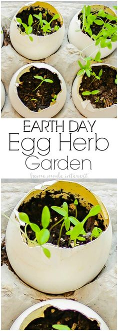 Eggshell Herb Garden | This simple Eggshell Herb Garden is a fun Earth Day Project to do with the kids! Teach your kids about sustainability and recycling using eggshells to make planters for herbs. Completely biodegradable and earth-friendly. A great kid activity for Earth Day! #ILoveGreenWorks #ad