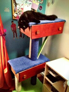 AndyWithAnM: Handy Mandy and the DIY Cat Tree.