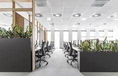 Metaforma Group divided individual working spaces with veneered, open-work sound diffusers, as well as panels filled with sound-absorbing fabrics. We have also designed high partition walls to minimize the discomfort of working in large open spaces. The details such as pots with greenery, located at the particular desks, gave the space a friendly character.