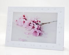 Light pink dreamy blooming plum flowers