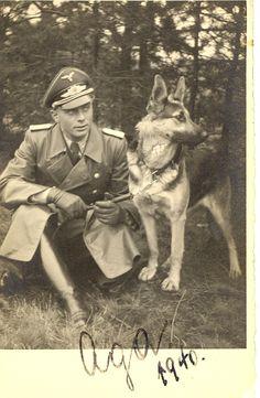 WWII GERMAN PHOTO dog helmet man's best friend Oda 1940.